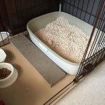 ペット用トイレ砂「猫砂」をトイレに流すと大惨事になる可能性