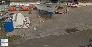 グーグルカーを追いかける犬が話題に